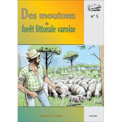 Des moutons en forêt littorale varoise