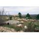 Les causses du Lot (46), des milieux intrinsèquement liés au maintien d'un élevage pastoral