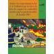 Comportement au feu et utilisation par les forces de lutte des coupures de combustible pendant les grands incendies 2003