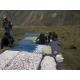 Fabrication des fromages au Ladakh/Zanskar (cl. F. Giroud)