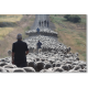 Troupeaux et bergers en transhumance (cañada real sorina, province de Soria), Espagne. ©Santiago Bayon Vera.