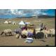 Campement d'éleveurs karahan, massif du Palandoken, Turquie. © Michaël Thevenin