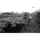 Le long de la ligne Cavaillon-Pertuis © Sophie Gunther